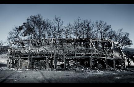 אוטובוס הצוערים - צילום: שלומי ניסים